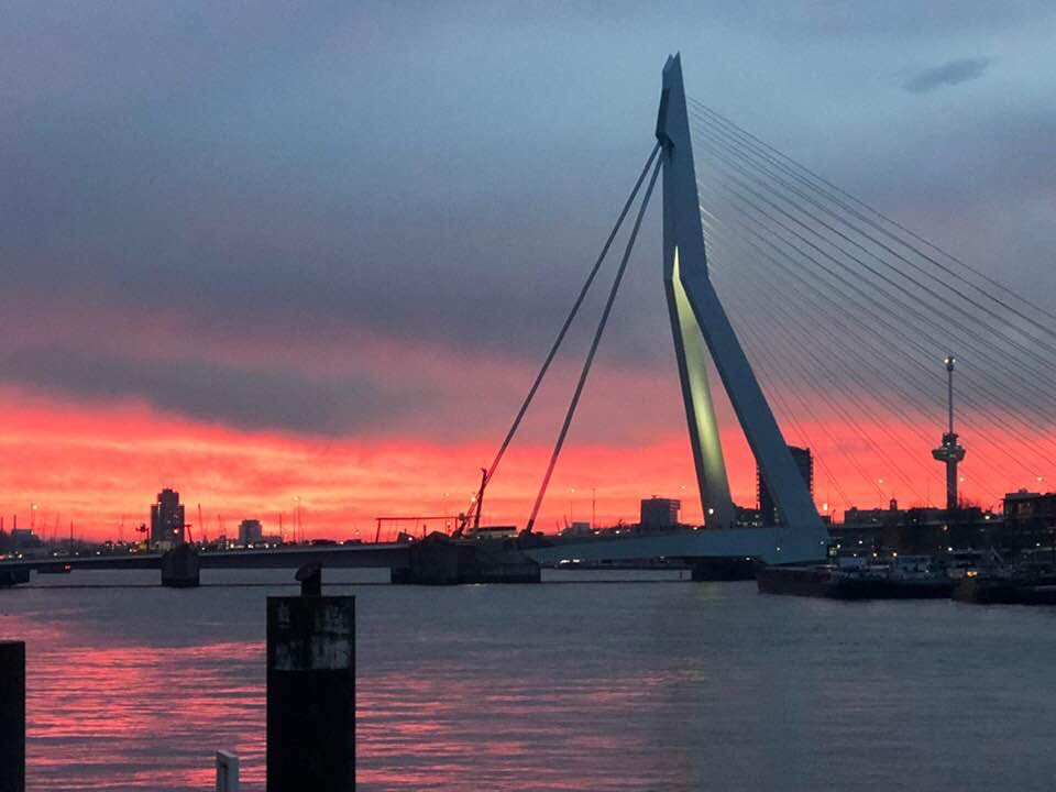 Rotterdam warmly willing to organize Eurovision 2021
